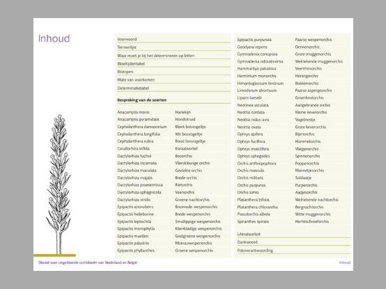 Lees meer over het artikel Nieuw:  Sleutel voor uitgebloeide orchideeën van Nederland en België.