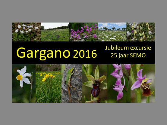 featured image Gargano