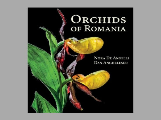 "Boekbespreking : ""Orchids of Romania"""