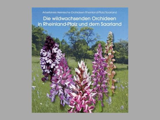 """Nieuw boek : """"Die wildwachsenden Orchideen  in Rheinland-Pfalz und dem Saarland"""""""