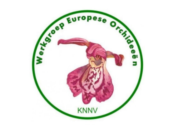 Lees meer over het artikel 29 februari 2020: ledenbijeenkomst Werkgroep Europese Orchideeën