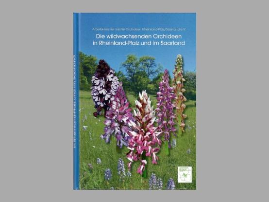 "Lees meer over het artikel Boekbespreking : ""Die wildwachsenden Orchideen  in Rheinland-Pfalz und dem Saarland"""